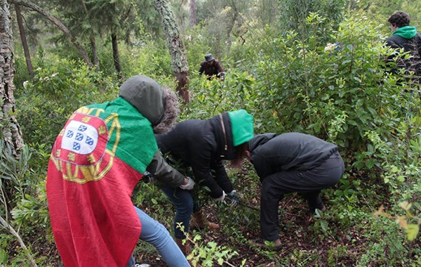 VOLUNTEER ESCAPES – VOLUNTEER with European Solidarity Corps for Activities in Portugal with Ecological Sense