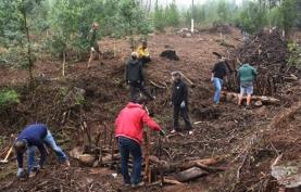 Protocolo para Recuperação do Perímetro Florestal do Monge – PN Sintra-Cascais