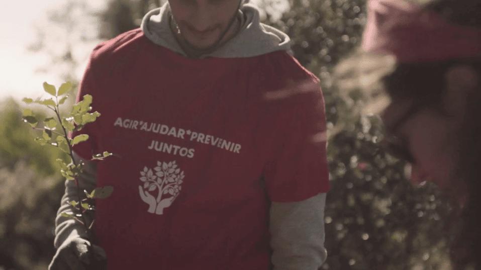 Plantar Uma Árvore | Parceiros em Ação