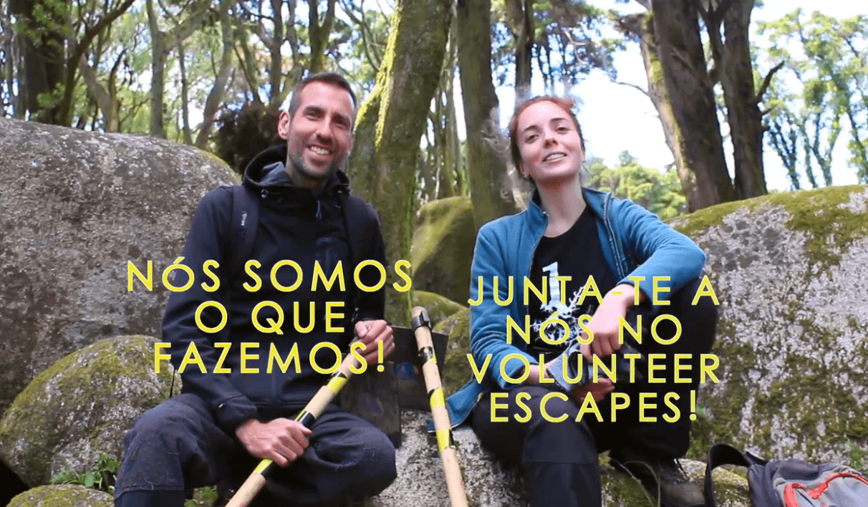 Plantar Uma Árvore | Volunteer Escapes