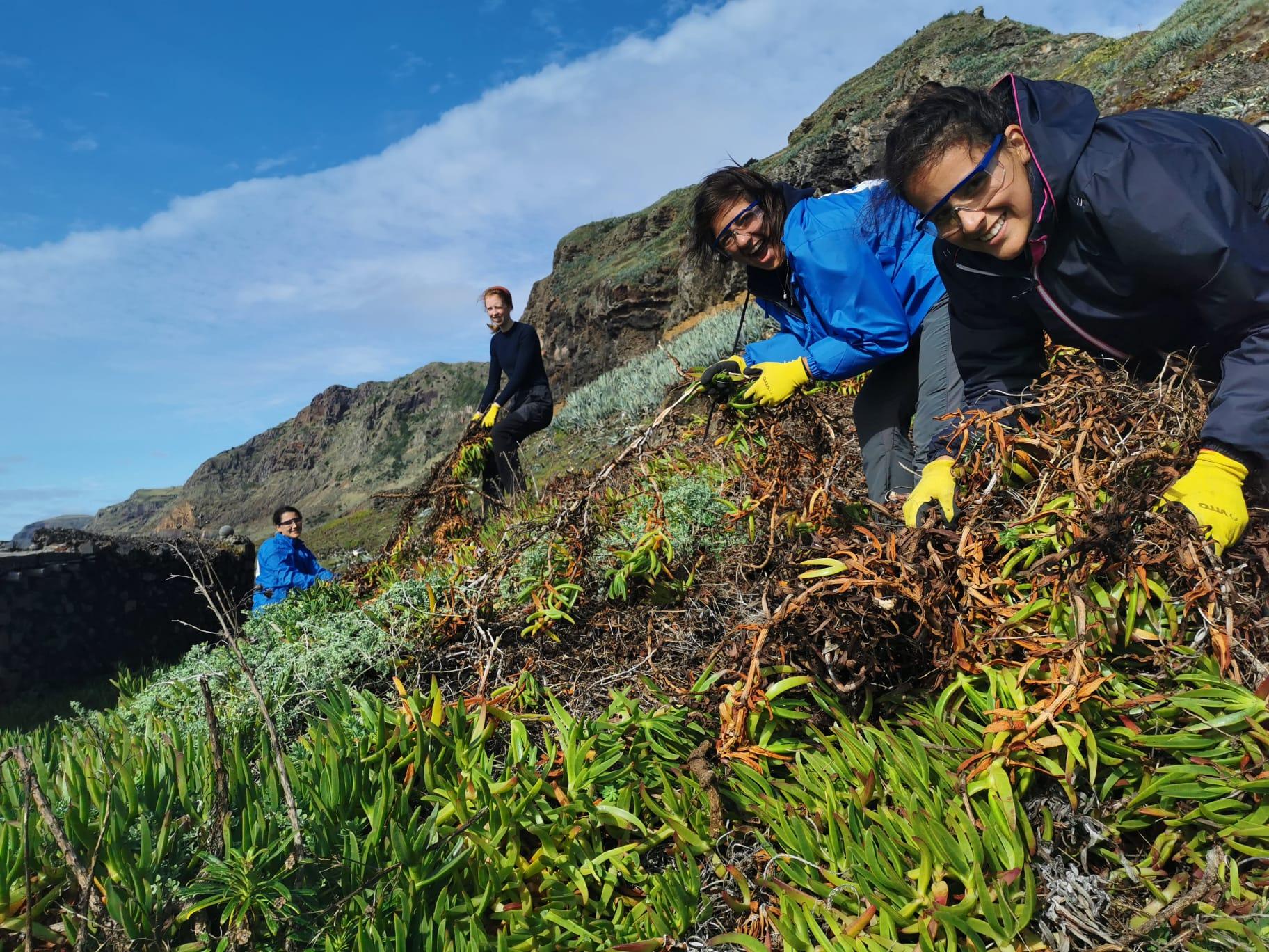 Volunteer Escapes Camps Madeira – Porto Santo